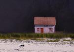 Hus och strandskata