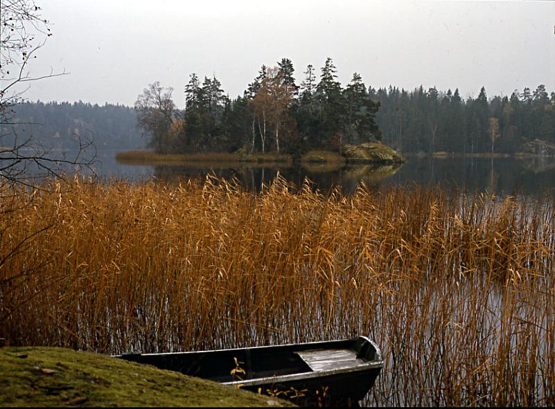 Höst vid sjön Hersen 1987