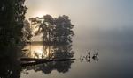 En dimmig septembermorgon i Trollhättan