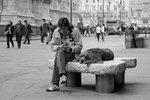 Hundgöra i Milano