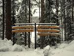 Vinter på Skogskyrkogården