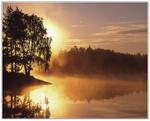 Guldmorgon vid sjön