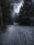 Vinterstigen