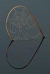 Spindelvävshjärta