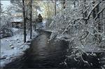 Vinterdagen