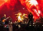 Led Zeppelin - In focus