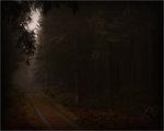 Den dunkla vägen
