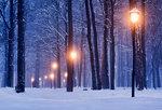 Ljuset i vintermörkret
