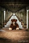 Alone Teddy