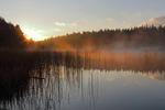 Morgons första strålar