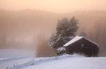 Vinter dag