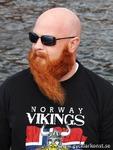 Röde Orm Viking från Arvika