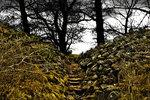 Mystisk trappa