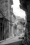 Kubas gator