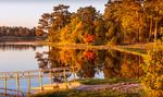 Höstens färger