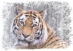 Ligger här och tiger ;-)