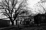 Skolgården