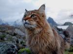 Vakthunden Katta Strofe