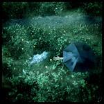 paraplyt