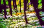 Sonny_Larsson_2-Redigera-Redigera-2-Redigera-Redigera-2.jpg