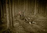 Ej längre skogens konung