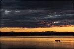 Båttur i Solnedgången