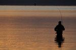 Flugfiskare,2.