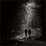 I skogen är man aldrig ensam