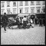 Old Town Visitors