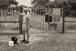 Rehabcenter för skadade kattdjur i Syd-Afrika -