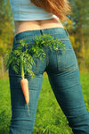 Pocket Carrot