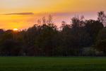 Solen försvinner bakom träden i Alleby