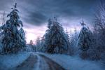 Vintervägens Väktare