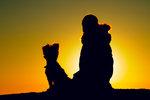 Sharing sunset