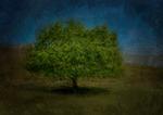Det gröna trädet