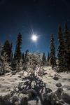 Tindrande måne