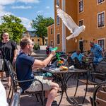 Trutattack i Karlskrona