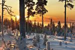 Vinter i Lappland