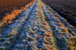 Frostig körväg