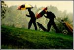 Golfare i regn och dimma