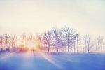 sol i morgondis