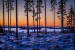 #Kall morgon
