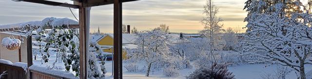Panorama över min vinterträdgård 12 december 2016