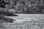 En bergknalle i sjön i svartvitt...