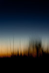 Diffus solnedgång