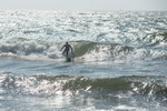 Nordic surf