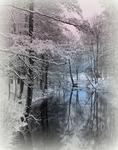 Svartån i vinterskurd