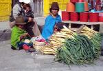 Saquisili Ecuador