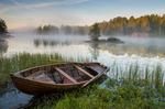 Morgondimma vid sjön