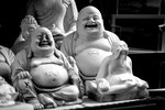Glada Buddhor